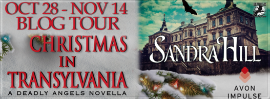 Christmas in Transylvania Banner 851 x 315