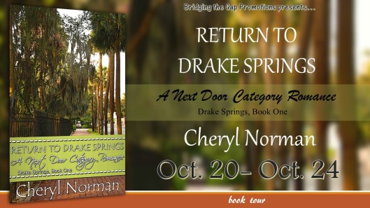 Return to Drake Springs Tour Banner