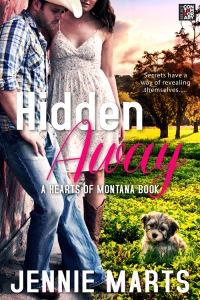 hidden-away-2-cover