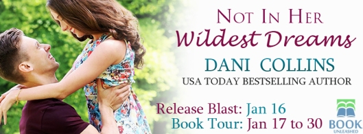 dani-collins-tour-graphic
